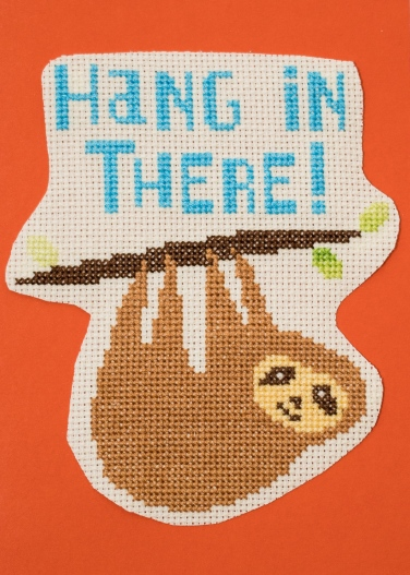 front of hanging in there sloth